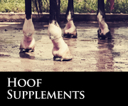 Click to view products in Hoof Supplements